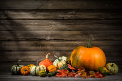 thanksgiving-day-autumnal-still-life-pumpkins-old-wooden-45272311